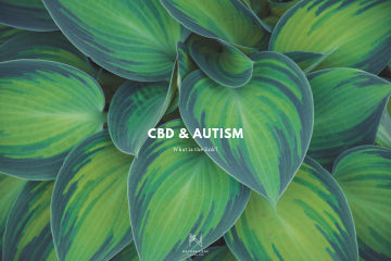 plants with text cbd and autism